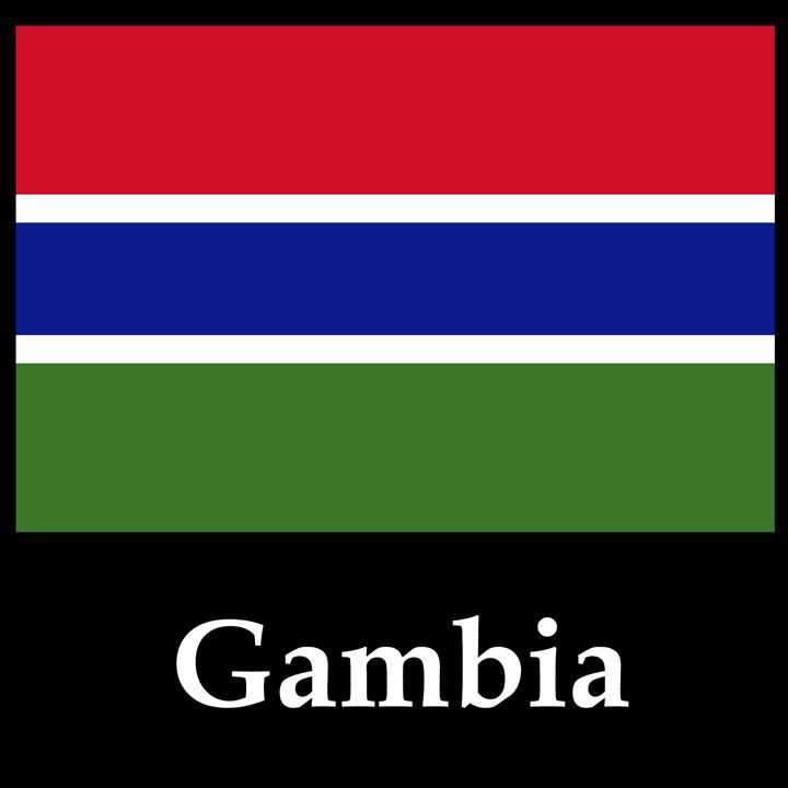 Gambia Flag And Name - My Evil Twin