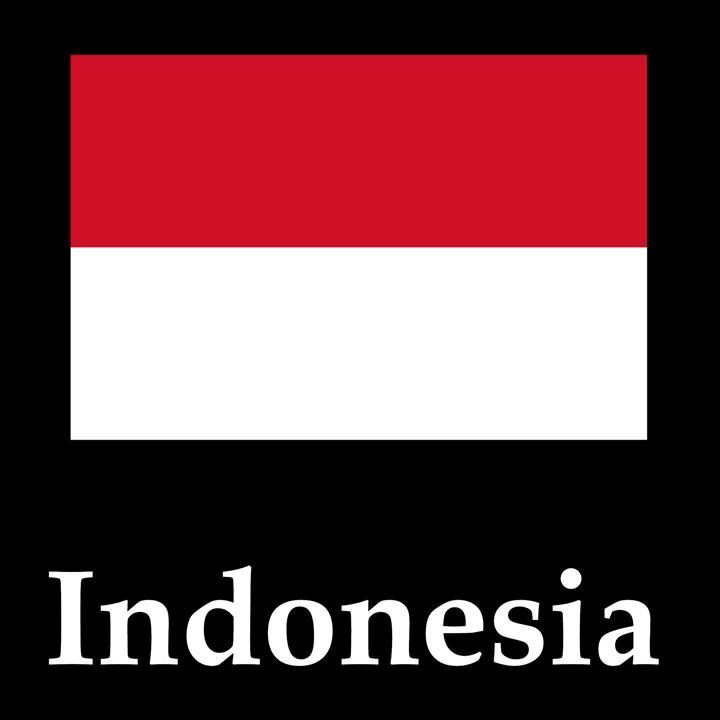 Indonesia Flag And Name - My Evil Twin