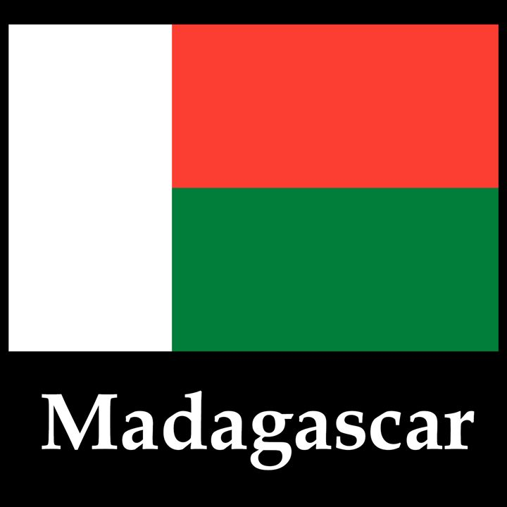Madagascar Flag And Name - My Evil Twin