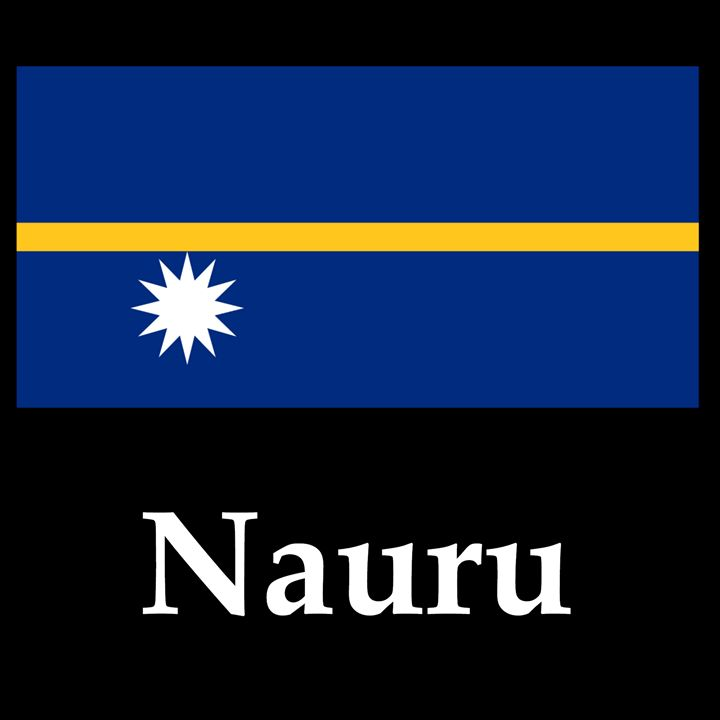 Nauru Flag And Name - My Evil Twin