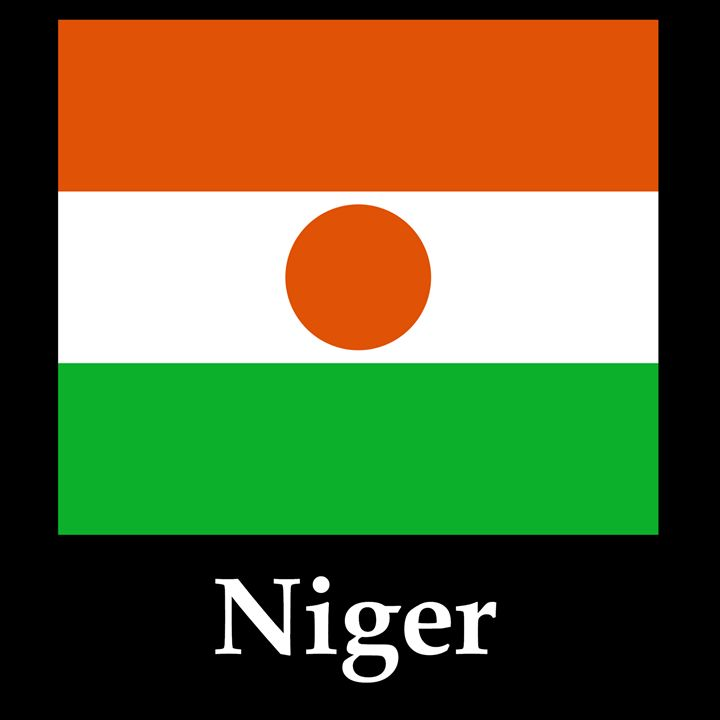 Niger Flag And Name - My Evil Twin