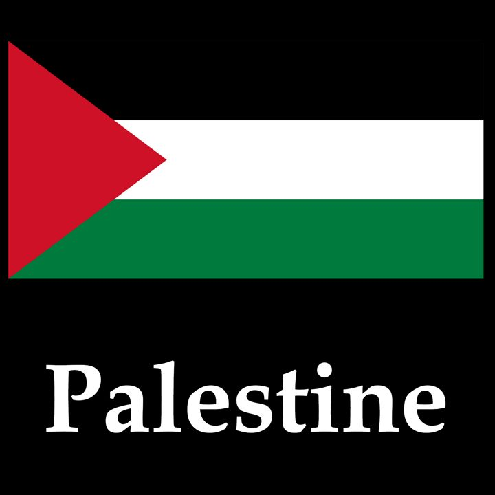 Palestine Flag And Name - My Evil Twin