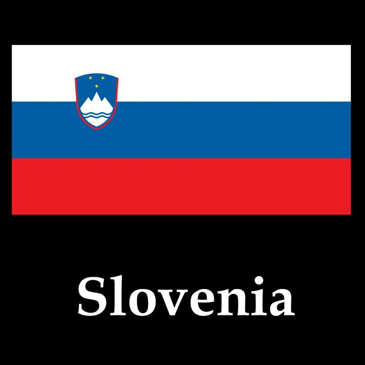 Slovenia Flag And Name - My Evil Twin