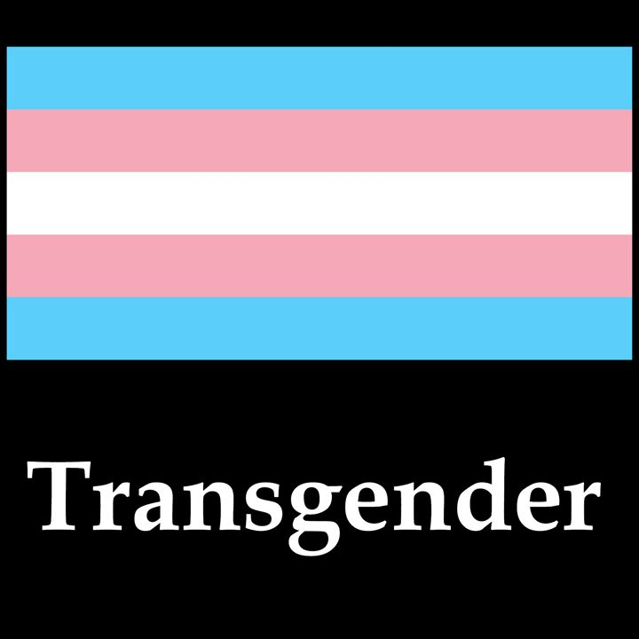 Transgender Flag And Name - My Evil Twin