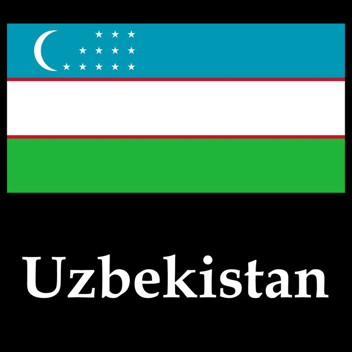 Uzbekistan Flag And name - My Evil Twin