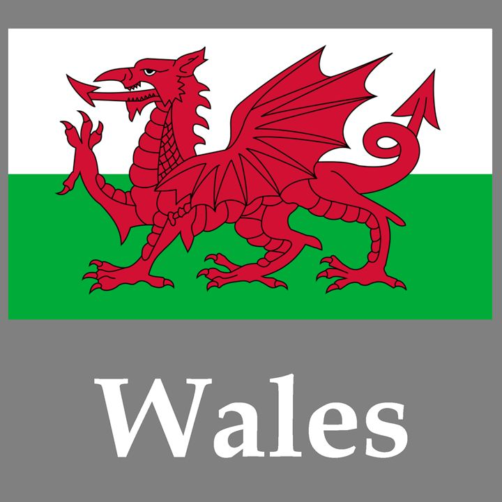 Wales Flag And Name - My Evil Twin