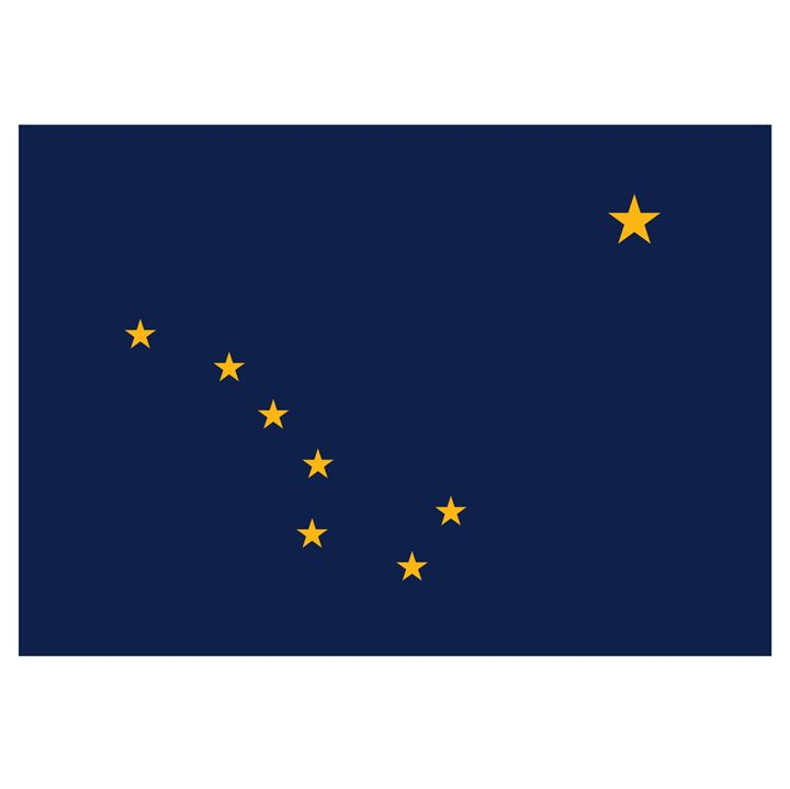 Alaska Flag - My Evil Twin