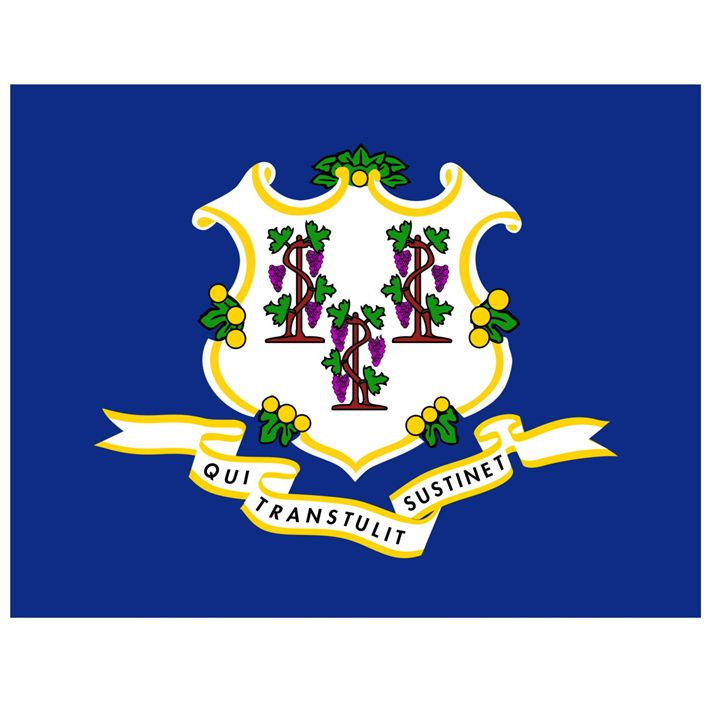 Connecticut Flag - My Evil Twin