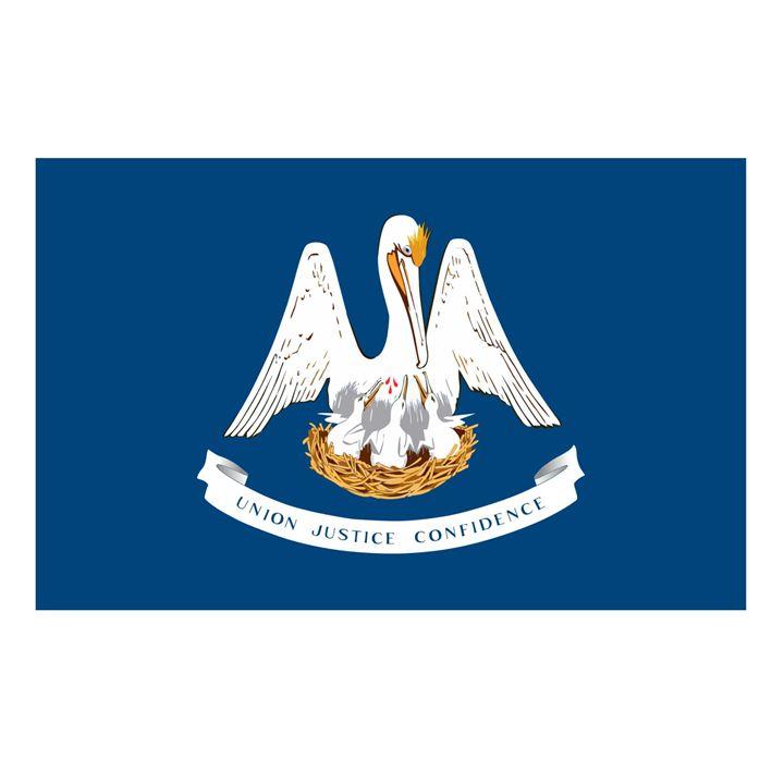 Louisiana Flag - My Evil Twin