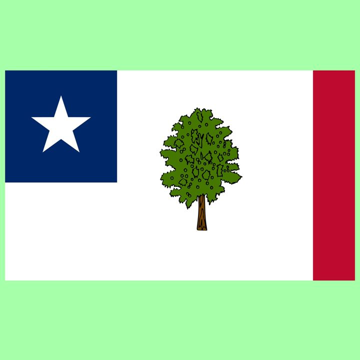 Mississippi Secession Flag - My Evil Twin