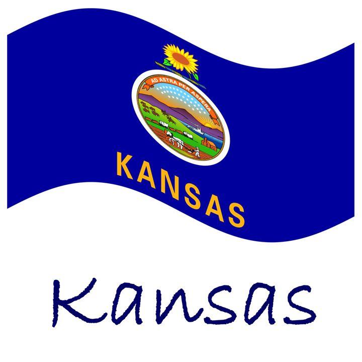 Kansas Flag - My Evil Twin