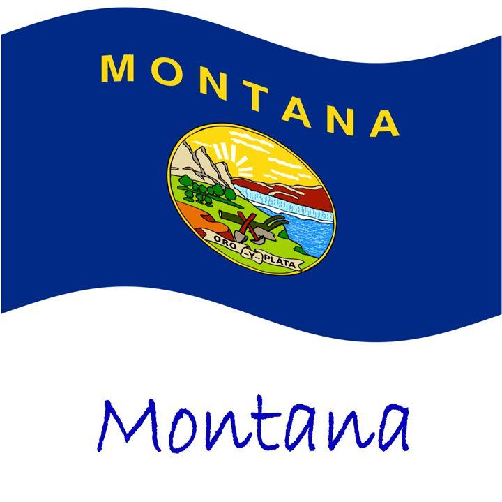 Montana Flag - My Evil Twin