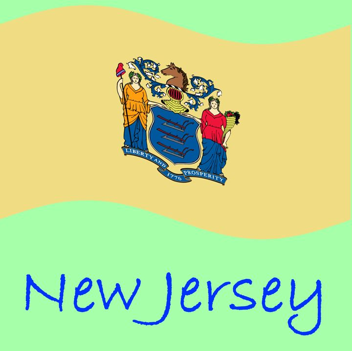 New Jersey Flag - My Evil Twin