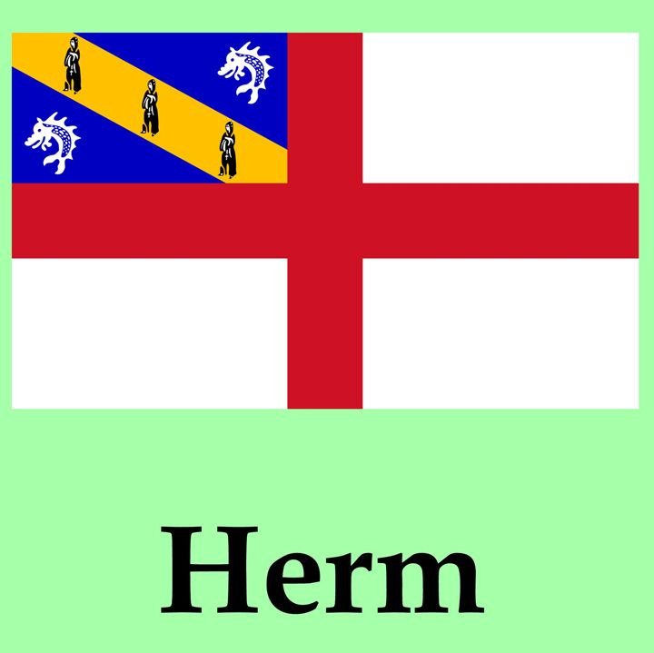 Herm Flag - My Evil Twin