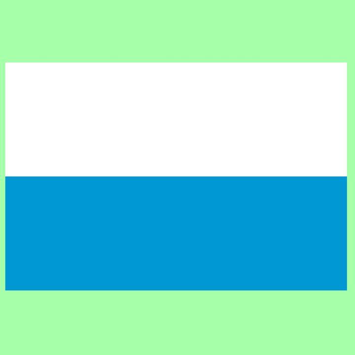 Bavaria Flag - My Evil Twin