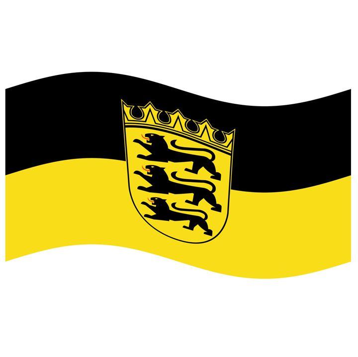 Baden Flag - My Evil Twin