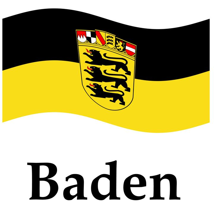 Baden Flag - My Evil Twin