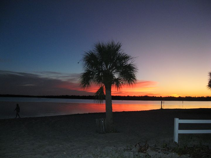Sunset Palm - My Evil Twin