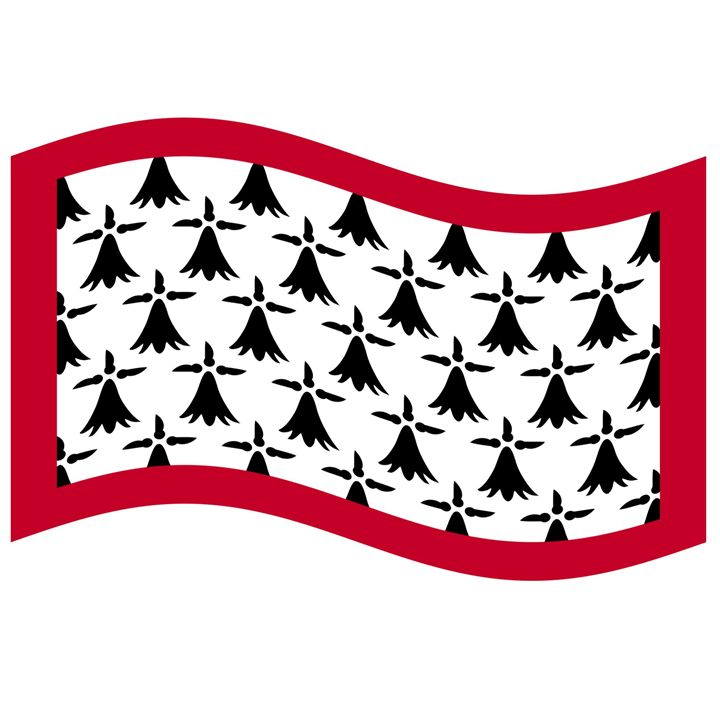 Limousin Flag - My Evil Twin