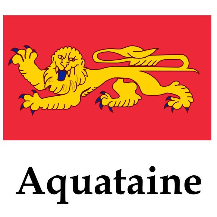 Aquataine Flag - My Evil Twin