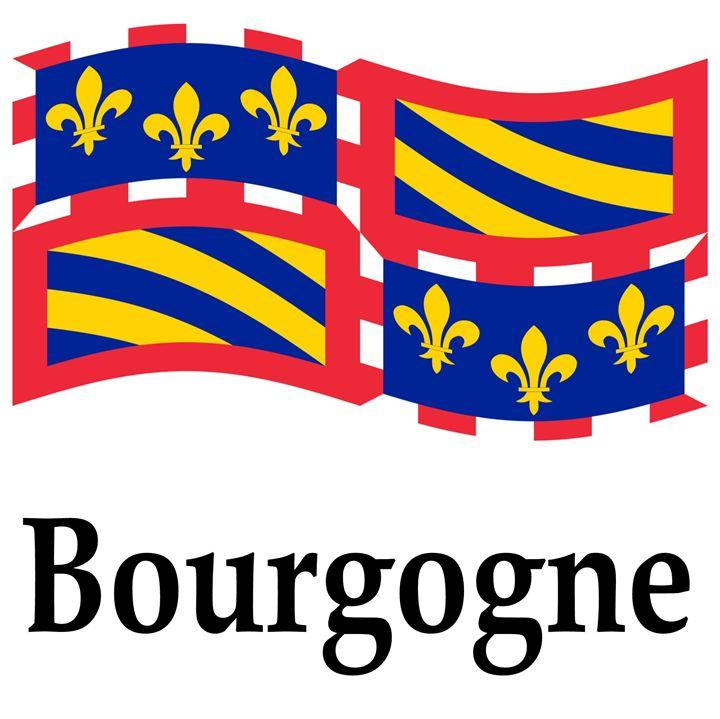 Bourgogne, France Flag - My Evil Twin