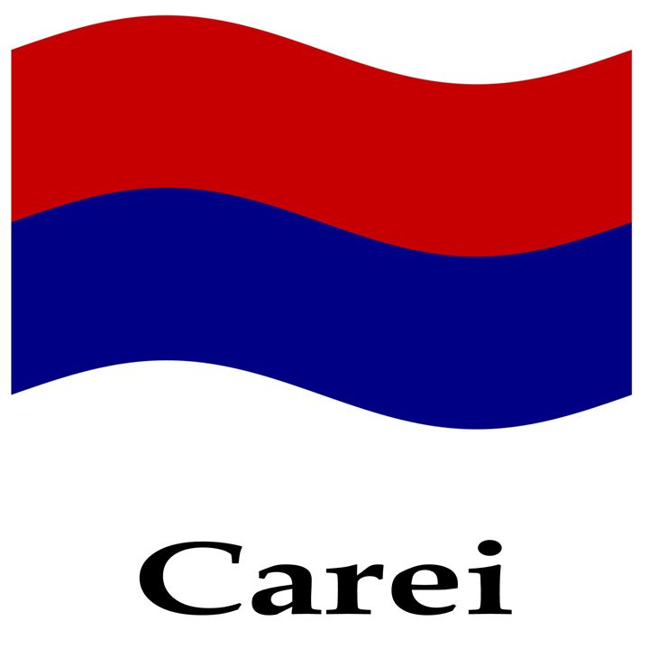 Waving Carei, Romania - My Evil Twin