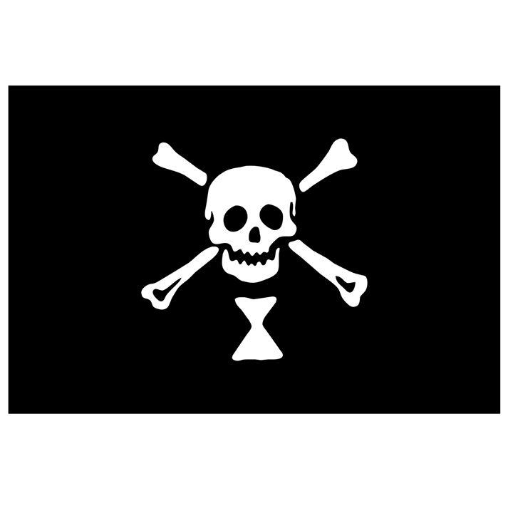 Pirate Flag Of Emanuel Wynne - My Evil Twin