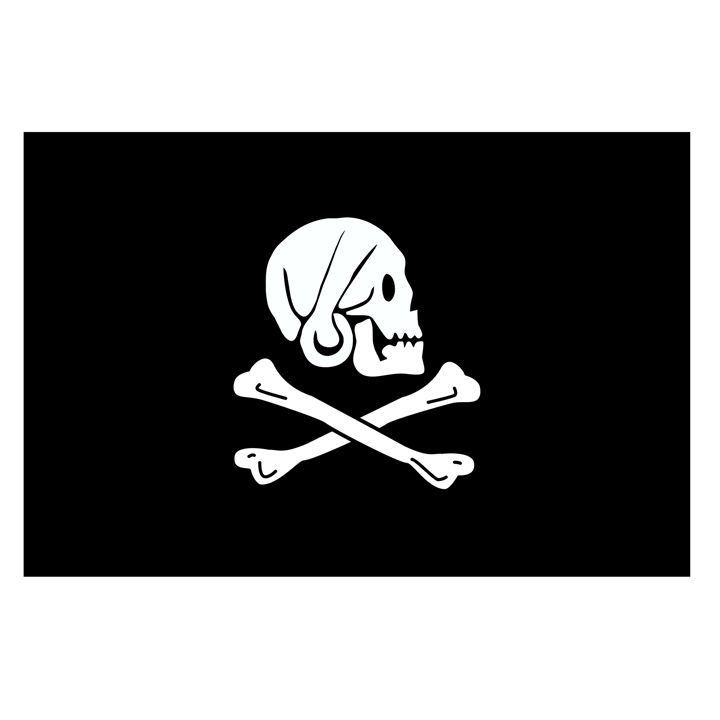 Pirate Flag Of Henry Every - My Evil Twin