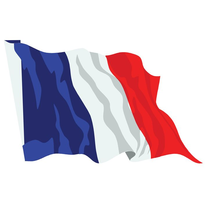 France Flag - My Evil Twin
