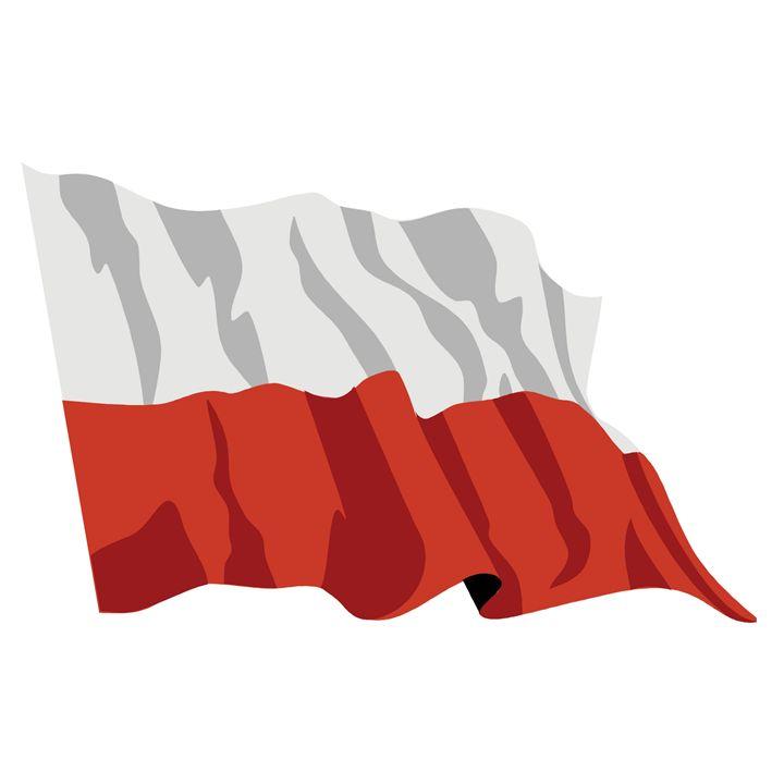 Poland Flag - My Evil Twin