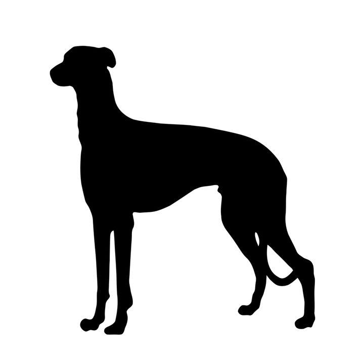 Dog #2 - My Evil Twin