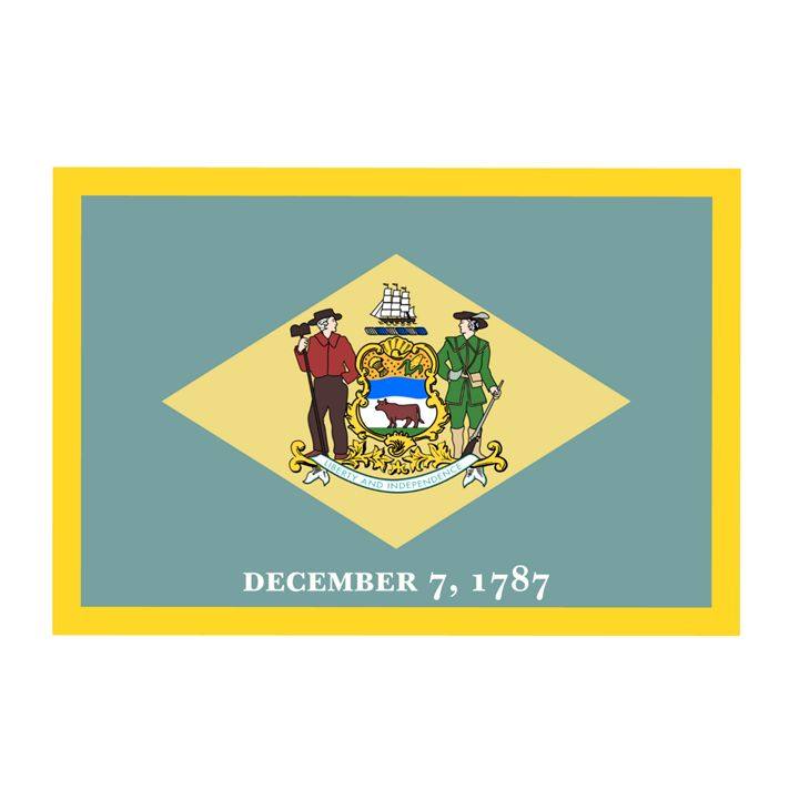 Delaware Flag - My Evil Twin