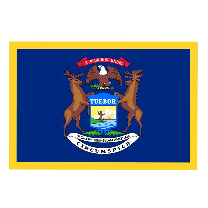 Michigan Flag - My Evil Twin
