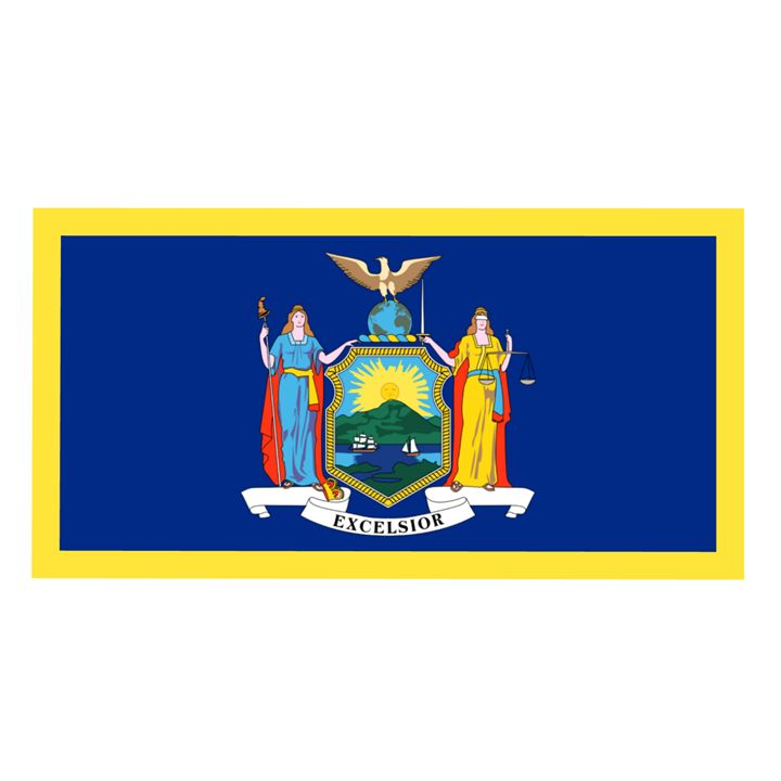 New York Flag - My Evil Twin