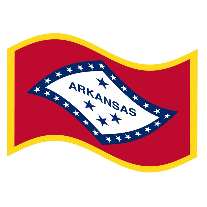 Arkansas Flag - My Evil Twin