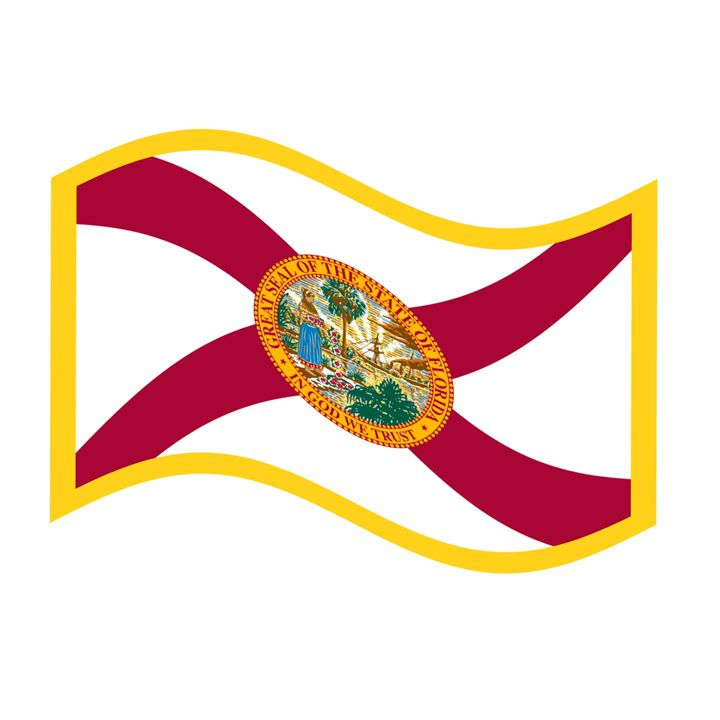 Florida Flag - My Evil Twin