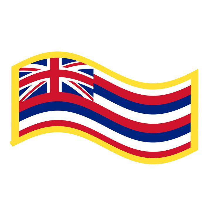 Hawaii Flag - My Evil Twin