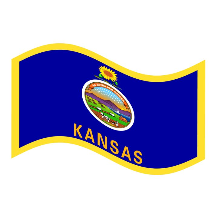 Kansas Flag - My Evil Twin