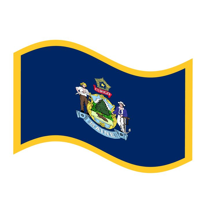 Maine Flag - My Evil Twin