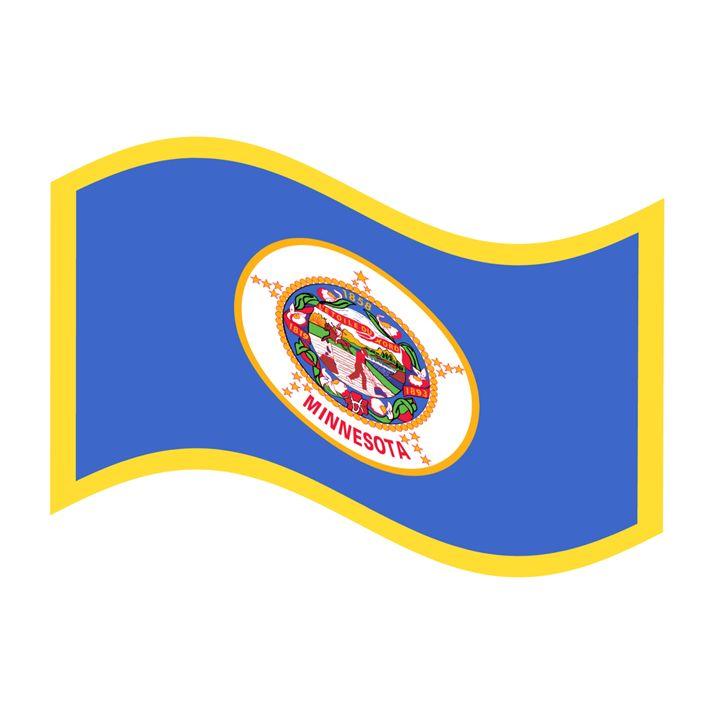 Minnesota Flag - My Evil Twin