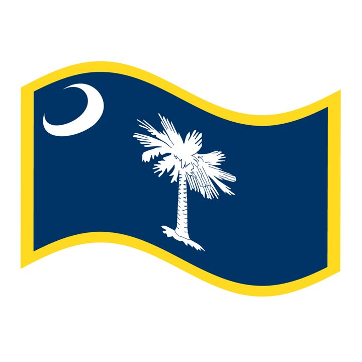 South Carolina Flag - My Evil Twin