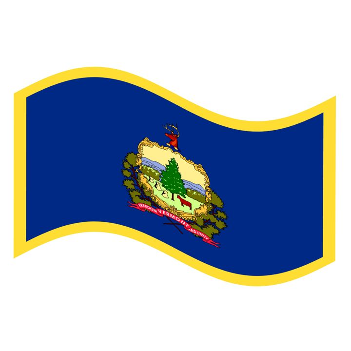 Vermont Flag - My Evil Twin