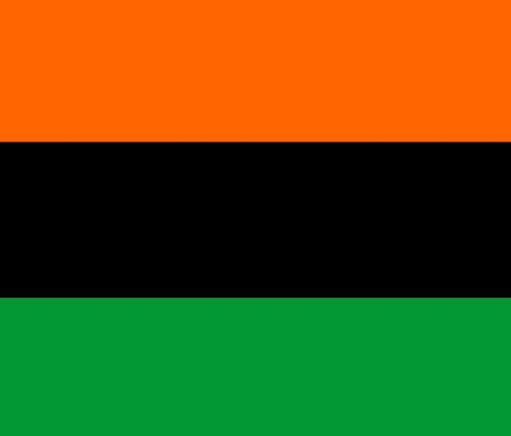 AfroAmerican Flag - My Evil Twin