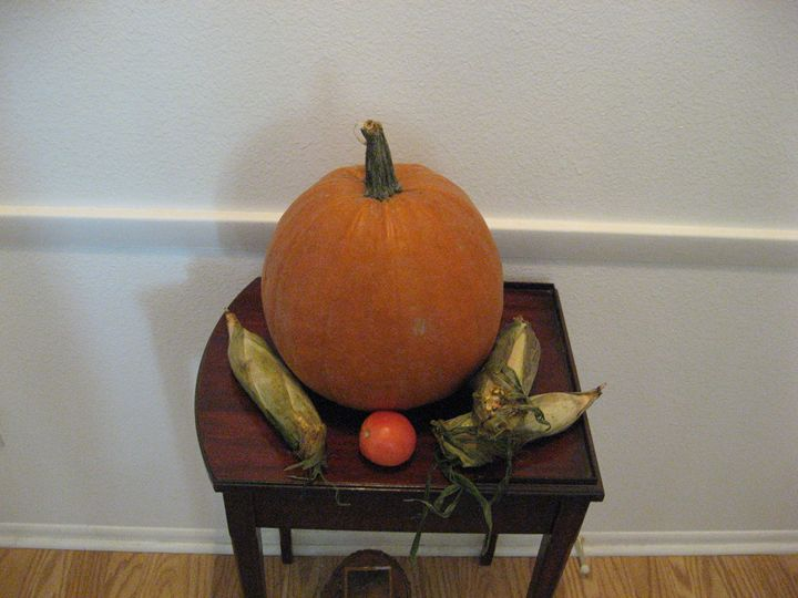 Fall Still Life - My Evil Twin