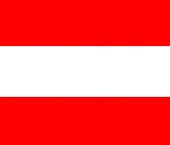 Austria Flag - My Evil Twin