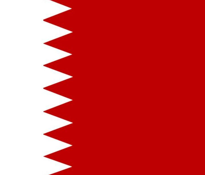 Bahrain Flag - My Evil Twin