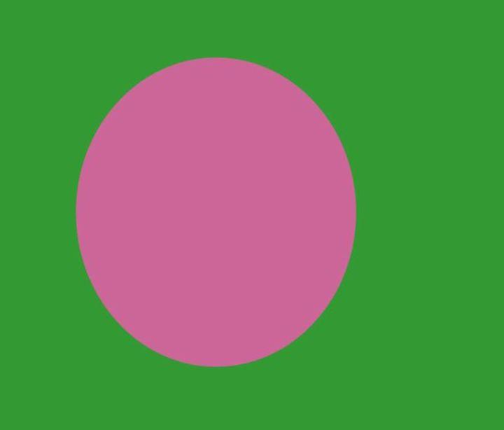Bangladesh Flag - My Evil Twin