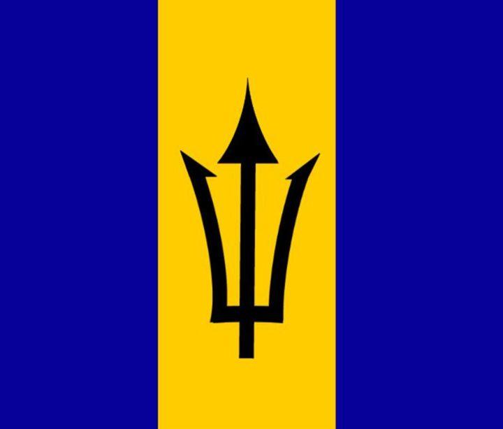 Barbados Flag - My Evil Twin