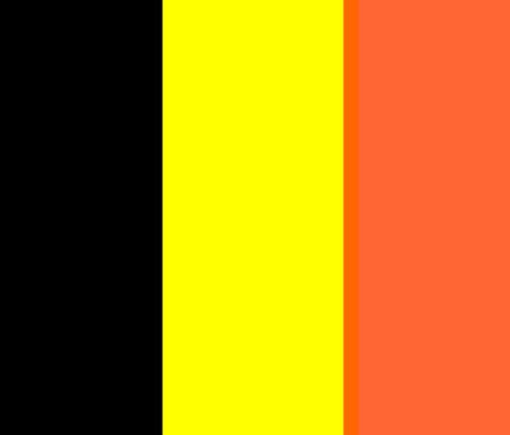 Belgium Flag - My Evil Twin