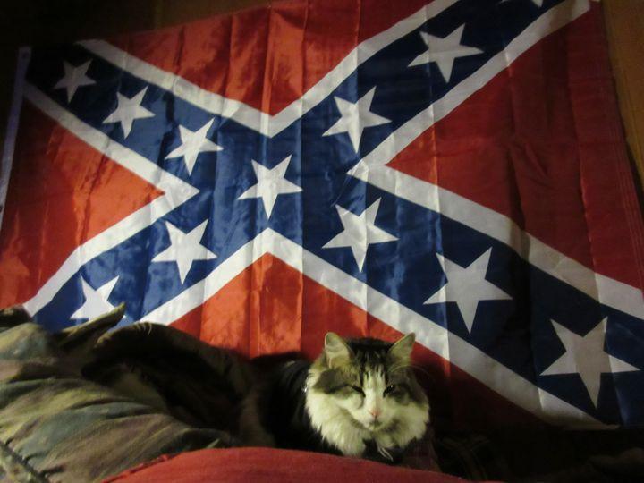 Rebel Cat - My Evil Twin